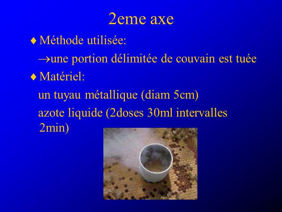 2eme axe Méthode utilisée: une portion délimitée de couvain est tuée Matériel: un tuyau métallique (diam 5cm) azote liquide (2doses 30ml intervalles 2min)
