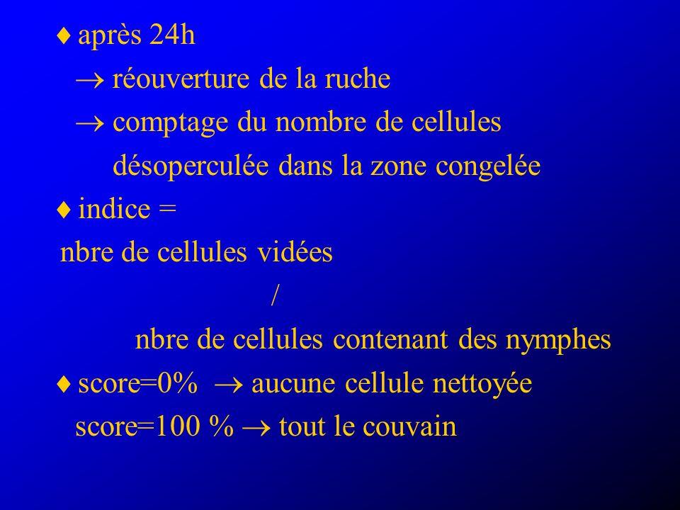 après 24h réouverture de la ruche comptage du nombre de cellules désoperculée dans la zone congelée indice = nbre de cellules vidées / nbre de cellules contenant des nymphes score=0% aucune cellule nettoyée score=100 % tout le couvain