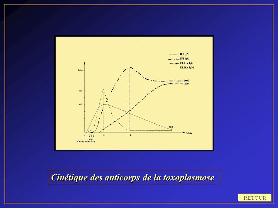 Cinétique des anticorps de la toxoplasmose