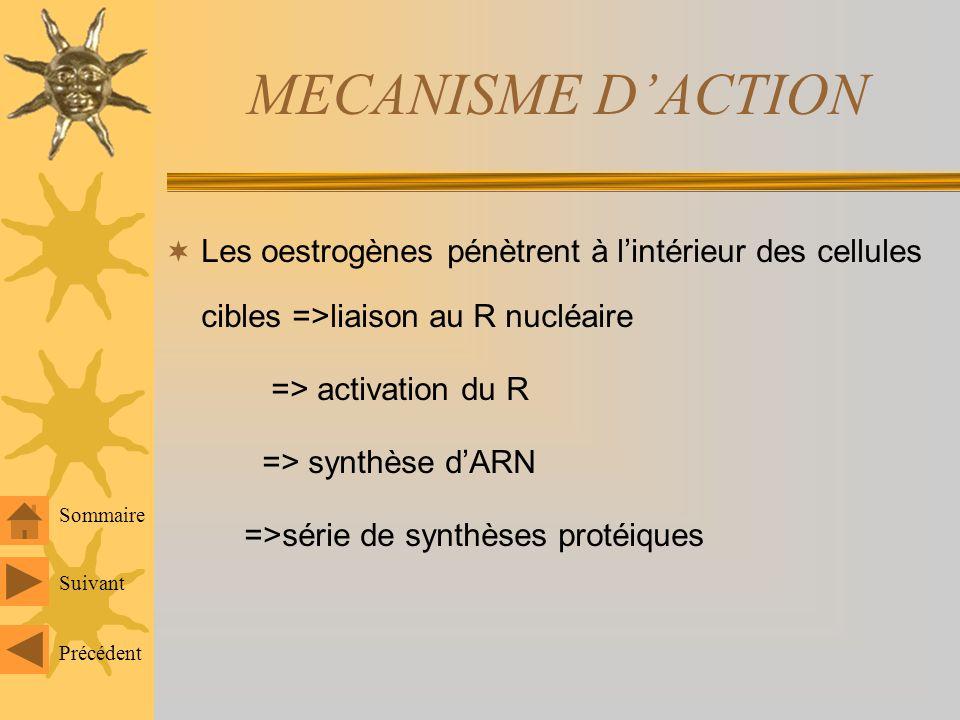 ACTION PHARMACOLOGIQUE : (forte dose) 6- Action cancérigène : K de lendomètre sils ne sont pas contrebalancés par la progestérone relation entre oestrogène et K du sein ou du vagin nest pas prouvée Suivant Précédent Sommaire