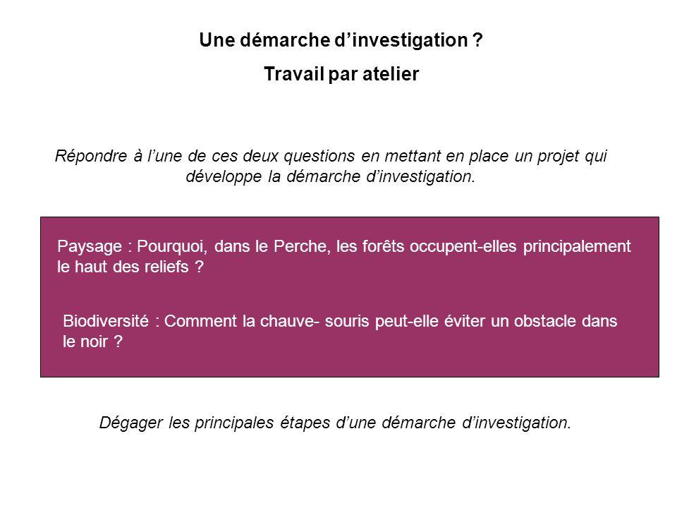 Dégager les principales étapes dune démarche dinvestigation. Une démarche dinvestigation ? Travail par atelier Répondre à lune de ces deux questions e