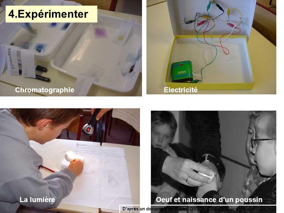 ChromatographieElectricité La lumièreOeuf et naissance d'un poussin 4.Expérimenter Daprès un document de M.Ch.COSSON CPC EPS – circonscription Evian