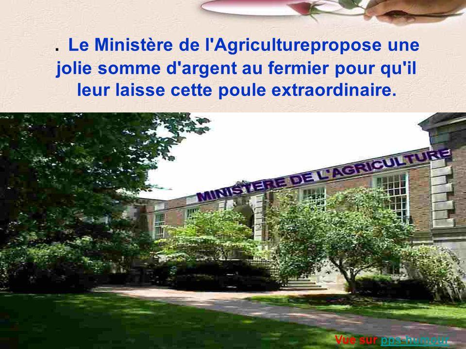 Le Ministère de l Agriculturepropose une jolie somme d argent au fermier pour qu il leur laisse cette poule extraordinaire.