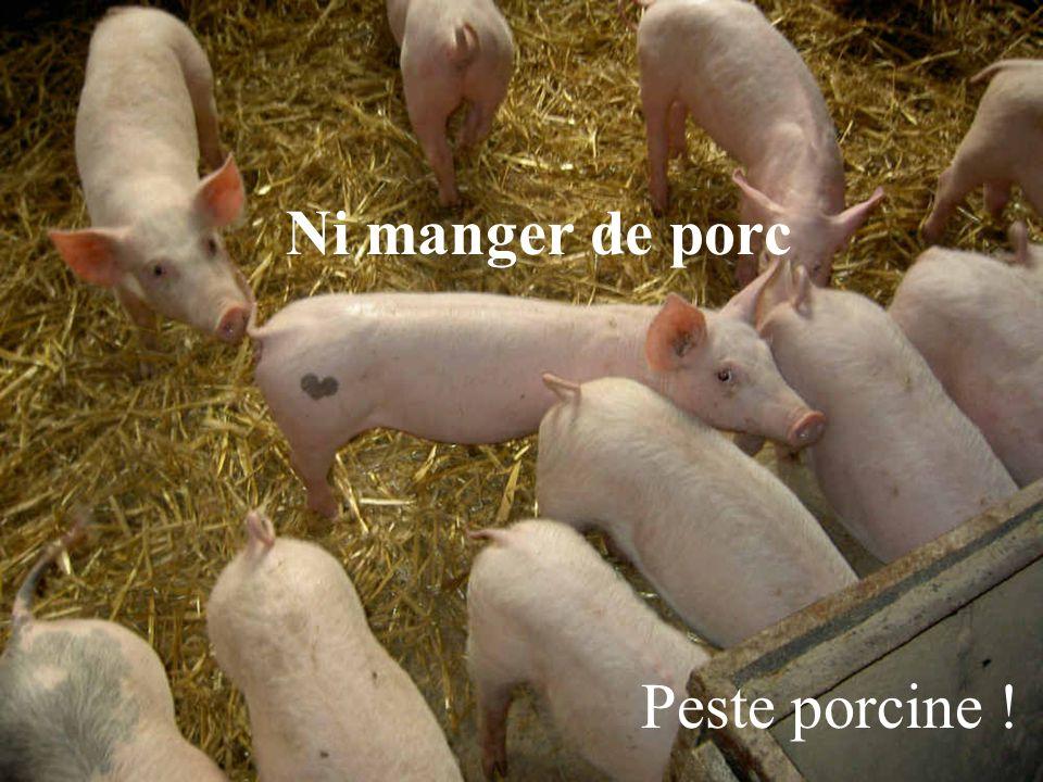 Ni manger de porc Peste porcine !