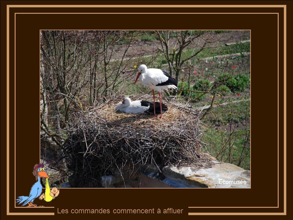 Pâques nest plus très loin ….