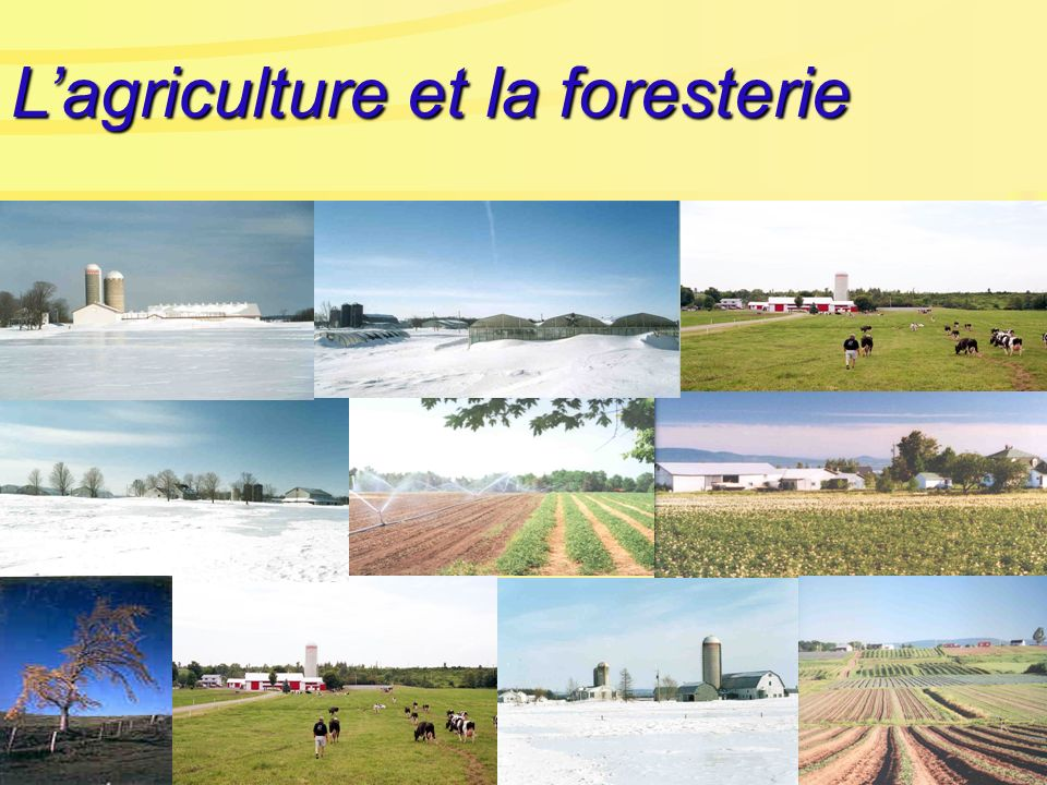 U ne agriculture essentiellement périurbaine