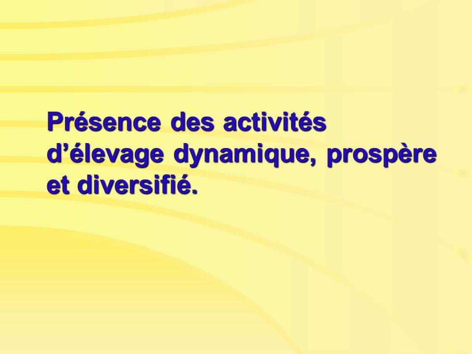 Présence des activités délevage dynamique, prospère et diversifié.