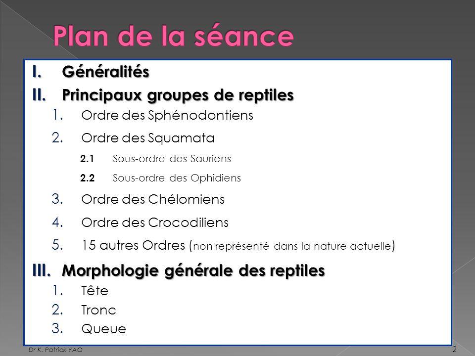 I. Généralités II. Principaux groupes de reptiles 1. Ordre des Sphénodontiens 2. Ordre des Squamata 2.1 Sous-ordre des Sauriens 2.2 Sous-ordre des Oph