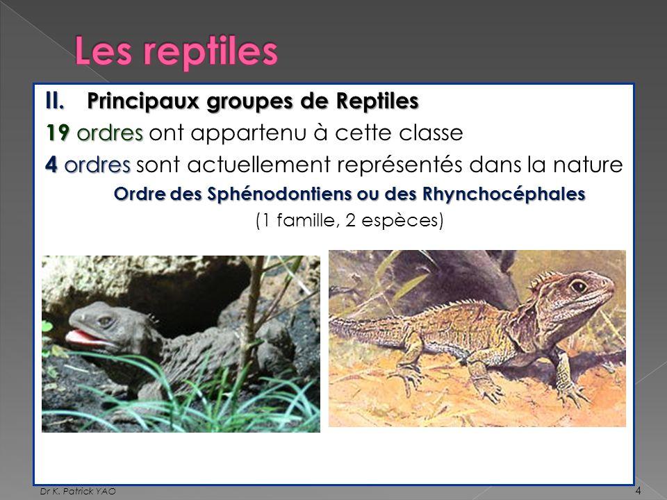 II. Principaux groupes de Reptiles 19 ordres 19 ordres ont appartenu à cette classe 4 ordres 4 ordres sont actuellement représentés dans la nature Ord
