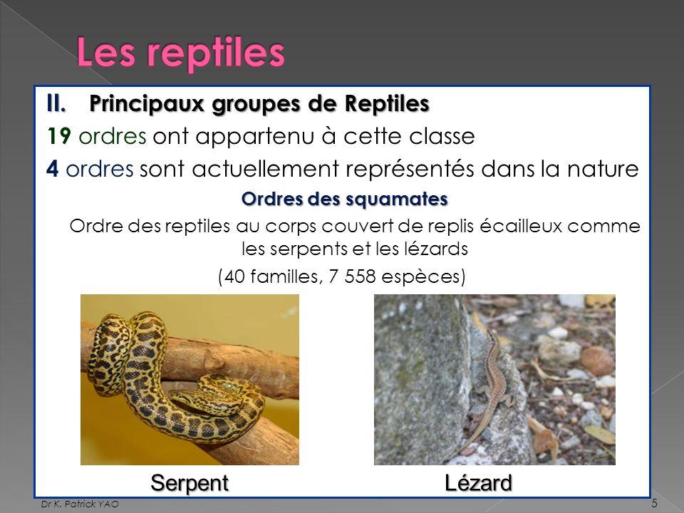 II. Principaux groupes de Reptiles 19 ordres ont appartenu à cette classe 4 ordres sont actuellement représentés dans la nature Ordres des squamates O