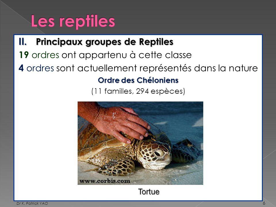 II. Principaux groupes de Reptiles 19 ordres ont appartenu à cette classe 4 ordres sont actuellement représentés dans la nature Ordre des Chéloniens (