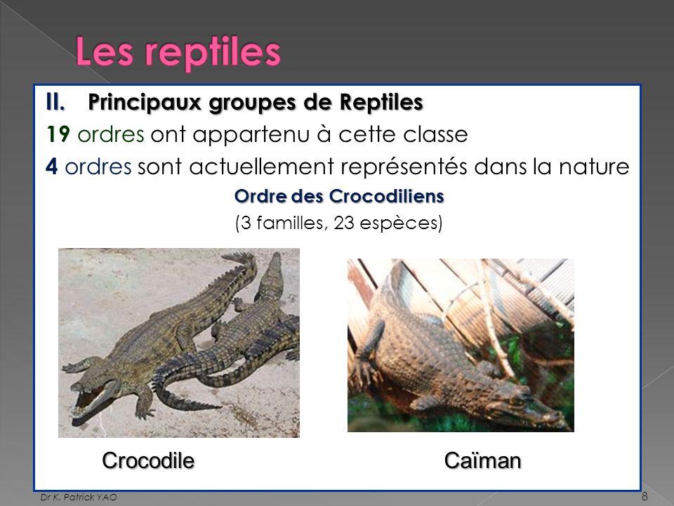 II. Principaux groupes de Reptiles 19 ordres ont appartenu à cette classe 4 ordres sont actuellement représentés dans la nature Ordre des Crocodiliens