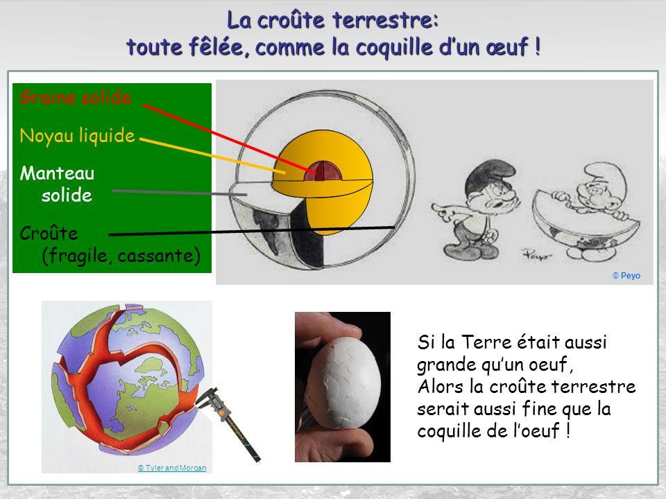 La croûte terrestre: toute fêlée, comme la coquille dun œuf ! Si la Terre était aussi grande quun oeuf, Alors la croûte terrestre serait aussi fine qu