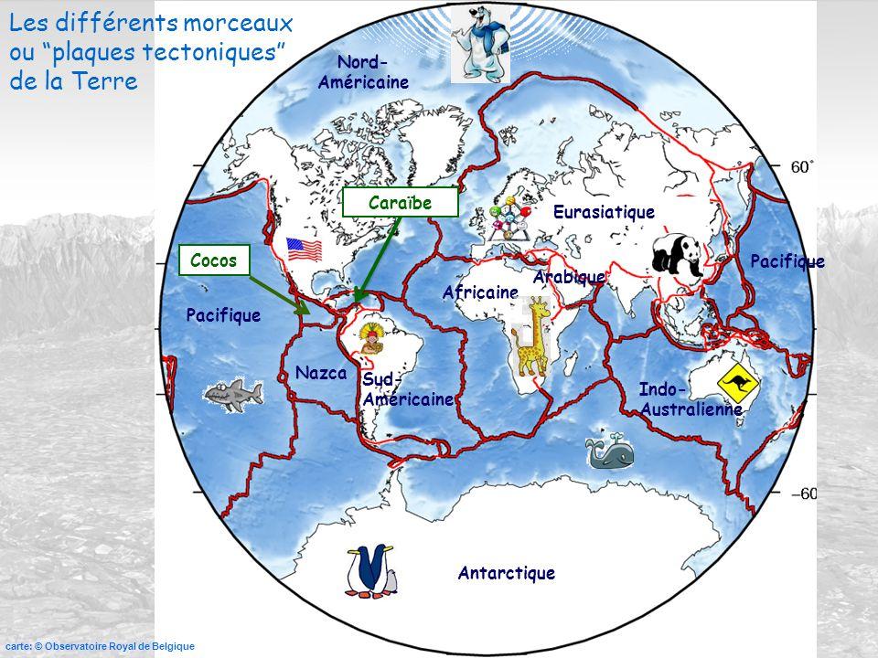Eurasiatique Africaine Antarctique Pacifique Nazca Sud- Américaine Nord- Américaine Caraïbe Indo- Australienne carte: © Observatoire Royal de Belgique