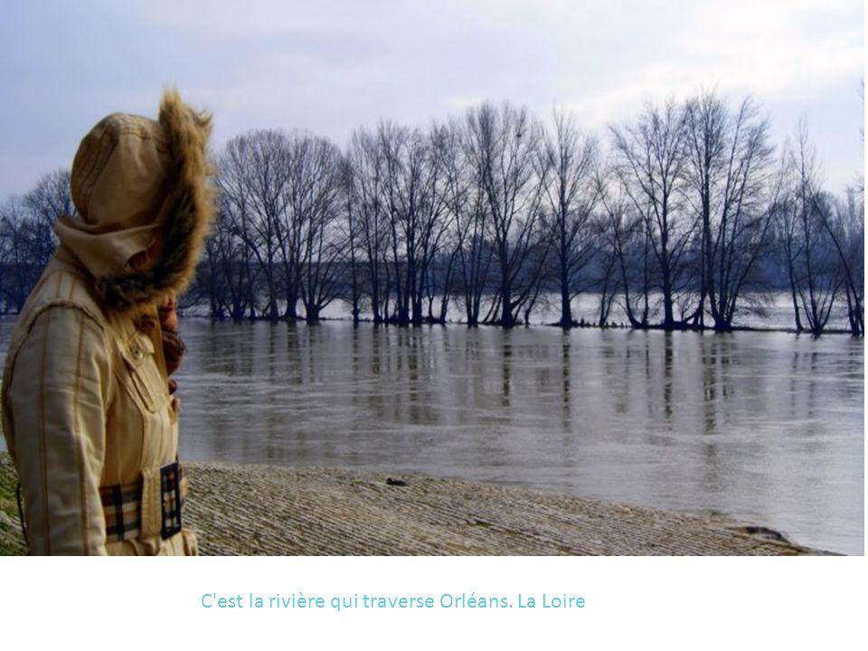 C'est la rivière qui traverse Orléans. La Loire