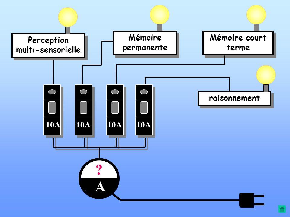 Mémoire permanentePerception multisensorielle CAPACITE DE RAISONNEMENT Mémoire de travail