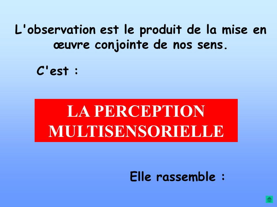 OBSERVATION ANALYSE ACTION CORRECTION BOUCLE OBSERVATION-ACTION