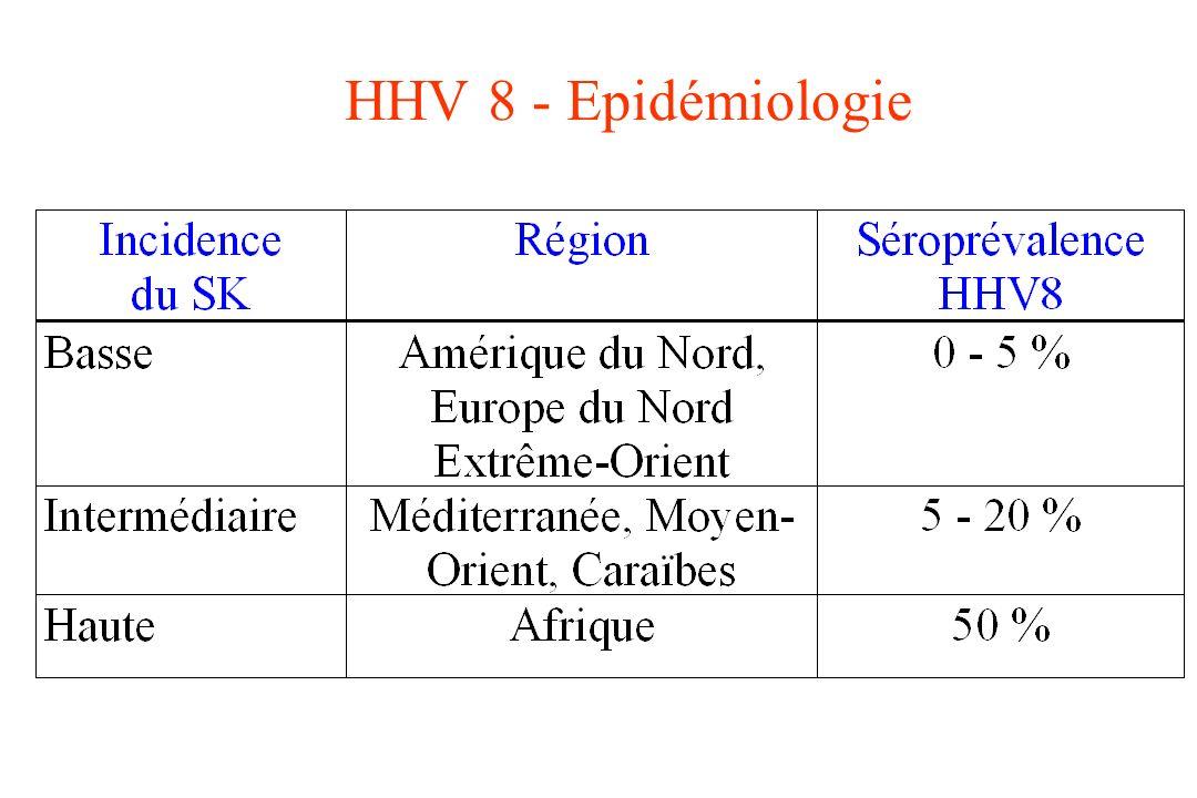 HHV 8 - Epidémiologie