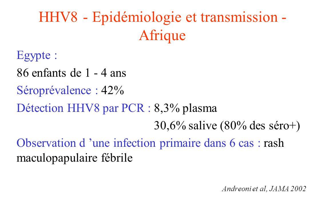 HHV8 - Epidémiologie et transmission - Afrique Egypte : 86 enfants de 1 - 4 ans Séroprévalence : 42% Détection HHV8 par PCR : 8,3% plasma 30,6% salive