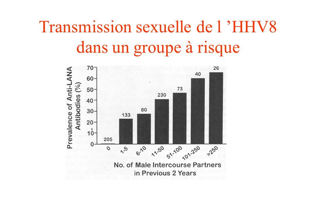 Transmission sexuelle de l HHV8 dans un groupe à risque