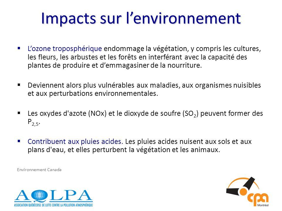 Impacts sur lenvironnement Lozone troposphérique endommage la végétation, y compris les cultures, les fleurs, les arbustes et les forêts en interférant avec la capacité des plantes de produire et demmagasiner de la nourriture.