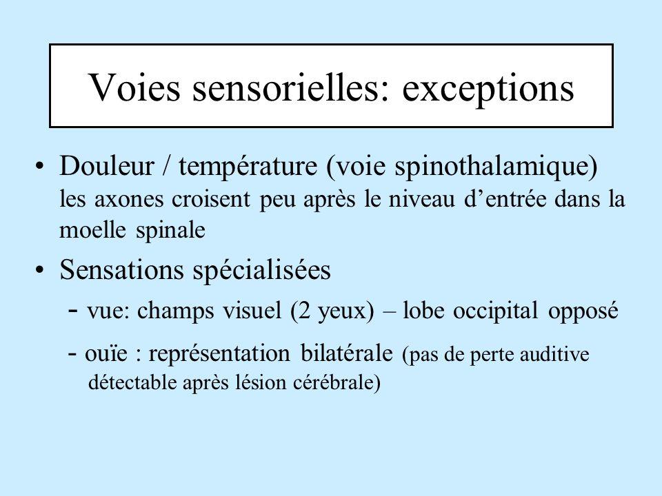 Voies sensorielles: exceptions Douleur / température (voie spinothalamique) les axones croisent peu après le niveau dentrée dans la moelle spinale Sen