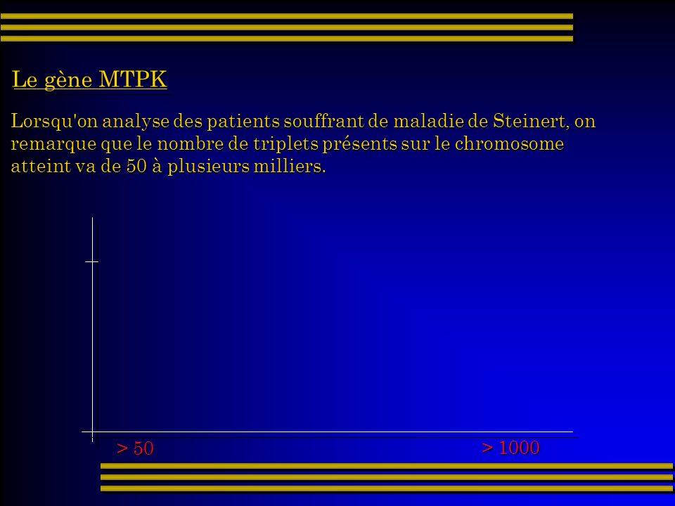 Lorsqu'on analyse des patients souffrant de maladie de Steinert, on remarque que le nombre de triplets présents sur le chromosome atteint va de 50 à p