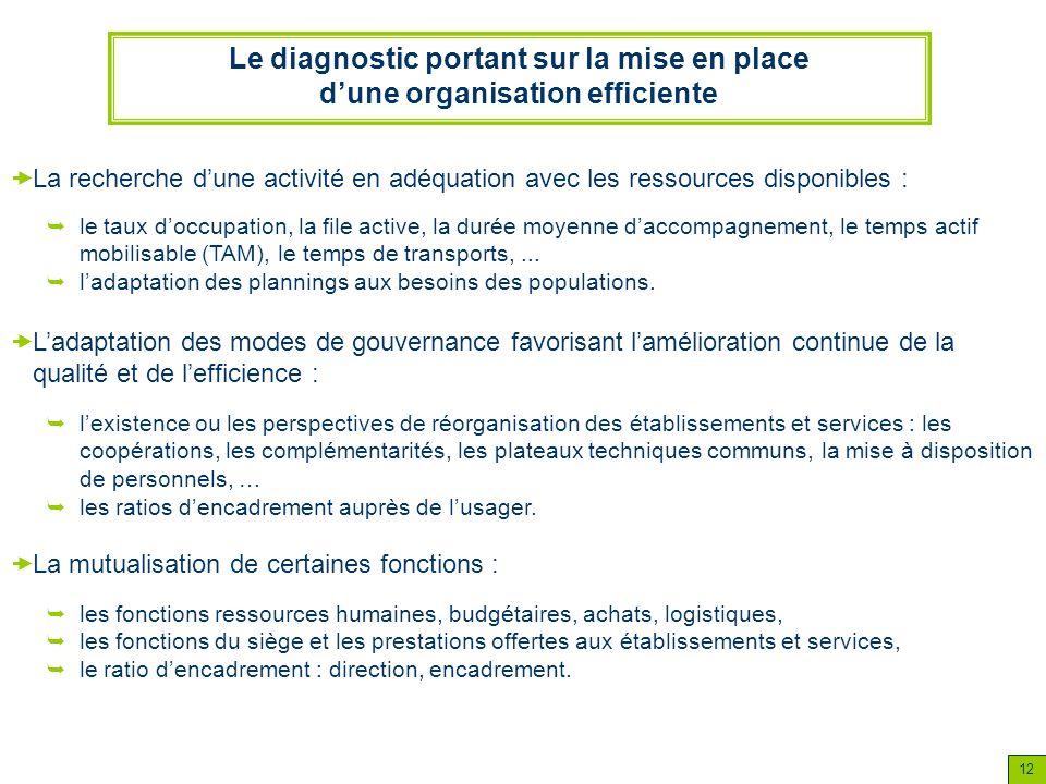 12 Le diagnostic portant sur la mise en place dune organisation efficiente le taux doccupation, la file active, la durée moyenne daccompagnement, le t