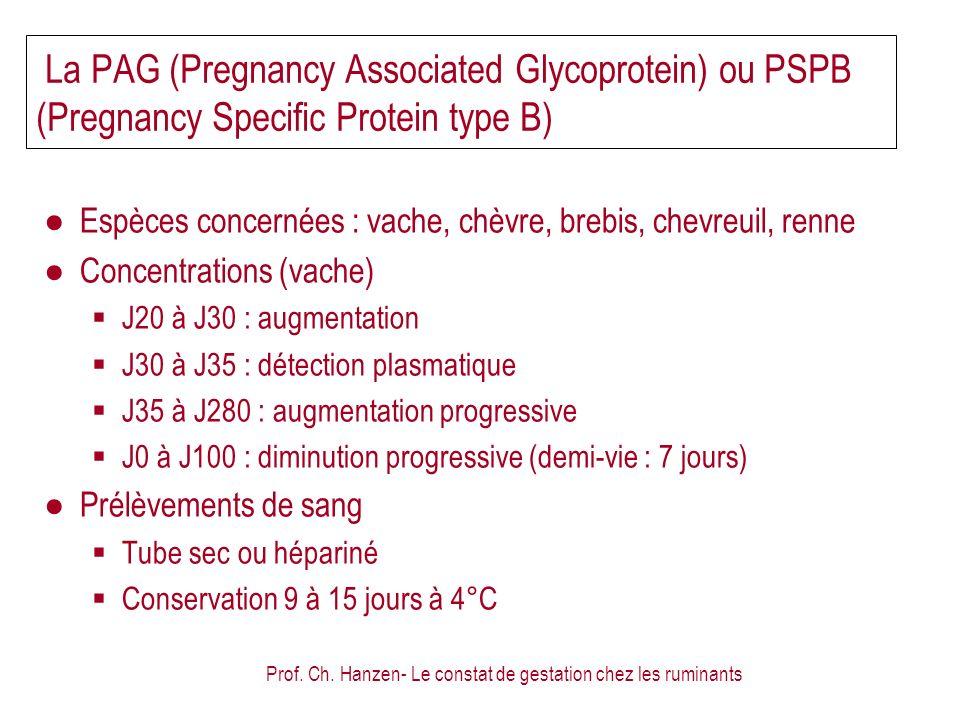 Prof. Ch. Hanzen- Le constat de gestation chez les ruminants La PAG (Pregnancy Associated Glycoprotein) ou PSPB (Pregnancy Specific Protein type B) Es