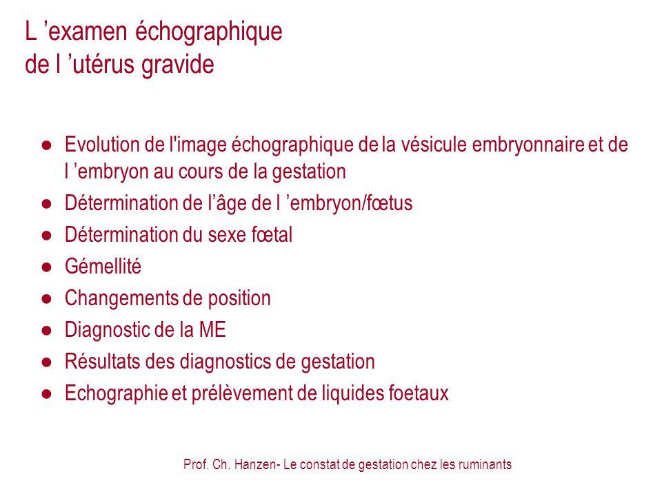 Prof. Ch. Hanzen- Le constat de gestation chez les ruminants L examen échographique de l utérus gravide Evolution de l'image échographique de la vésic
