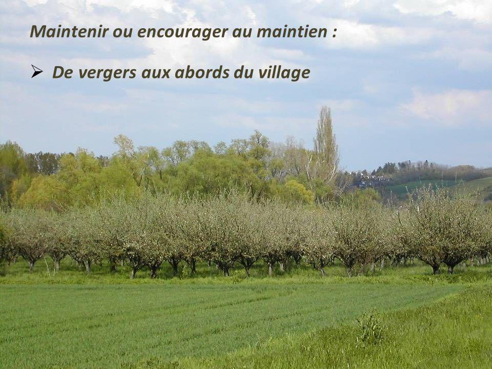 Maintenir ou encourager au maintien : De la végétation autour des bourgs
