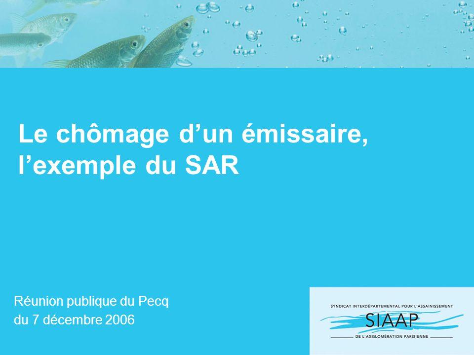 Le chômage dun émissaire, lexemple du SAR Réunion publique du Pecq du 7 décembre 2006