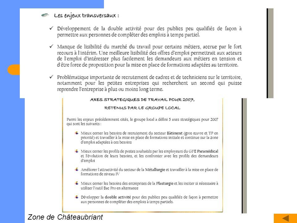 Axes stratégiques en vue des futurs plans dactions Zone de Châteaubriant