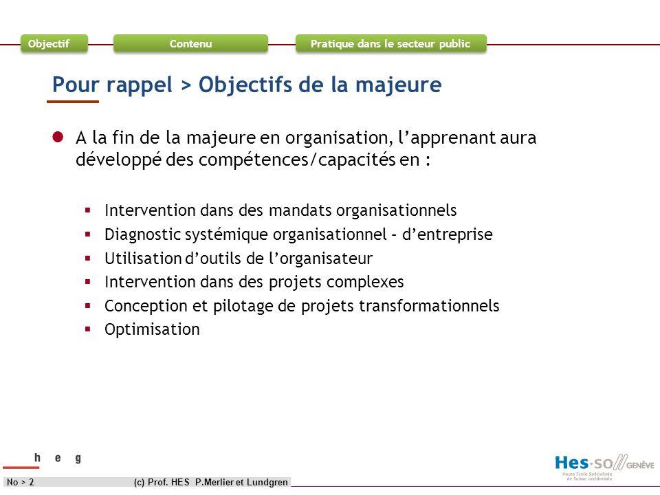 Objectif Contenu Pratique dans le secteur public Pour rappel > Objectifs de la majeure A la fin de la majeure en organisation, lapprenant aura dévelop