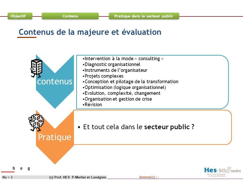 Objectif Contenu Pratique dans le secteur public (c) Prof. HES P.Merlier et LundgrenNo > 3 Contenus de la majeure et évaluation Annexe(s) : - contenus