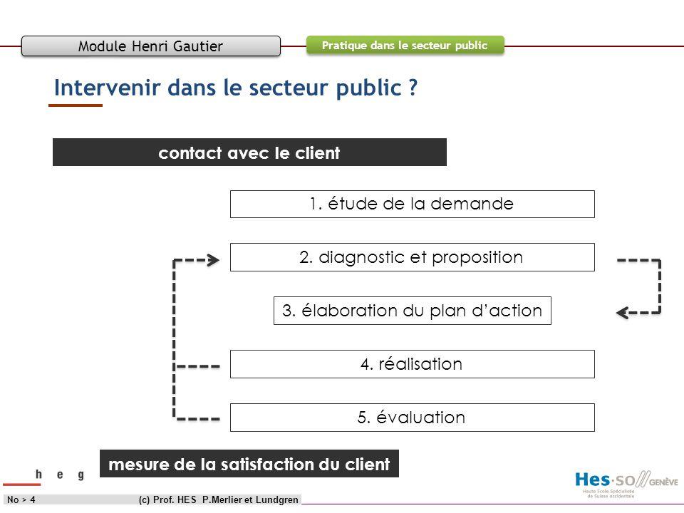 Objectif Contenu Pratique dans le secteur public Intervenir dans le secteur public ? (c) Prof. HES P.Merlier et LundgrenNo > 4 Module Henri Gautier co