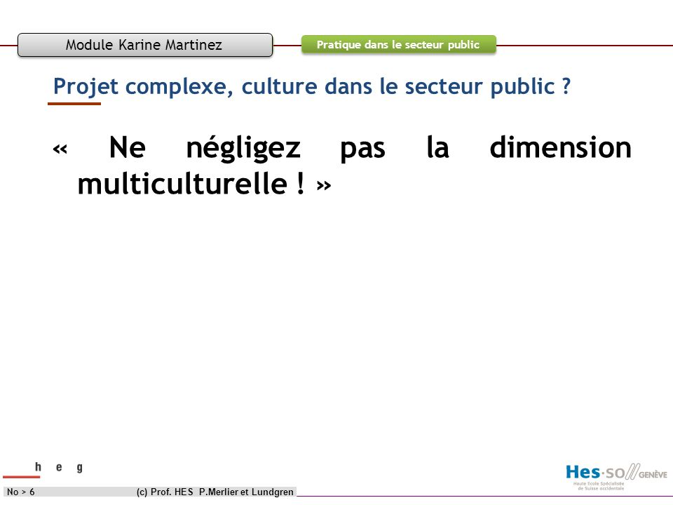 Objectif Contenu Pratique dans le secteur public Projet complexe, culture dans le secteur public ? « Ne négligez pas la dimension multiculturelle ! »