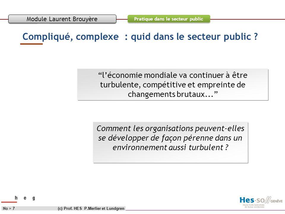 Objectif Contenu Pratique dans le secteur public Compliqué, complexe : quid dans le secteur public ? (c) Prof. HES P.Merlier et LundgrenNo > 7 Module
