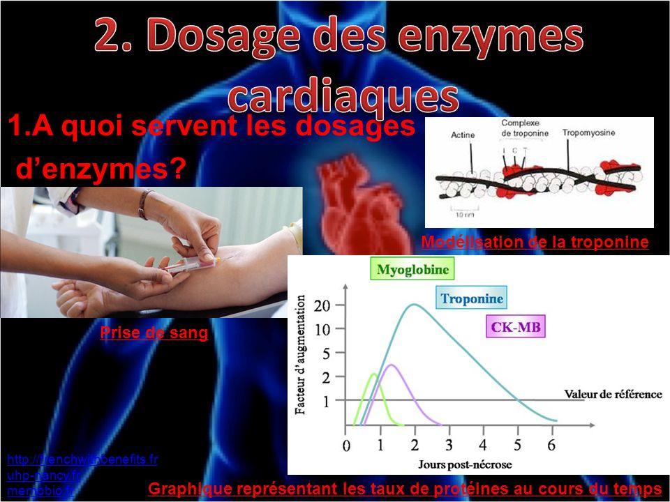 1.A quoi servent les dosages denzymes? http://frenchwithbenefits.fr uhp-nancy.fr memobio.fr Prise de sang Modélisation de la troponine Graphique repré