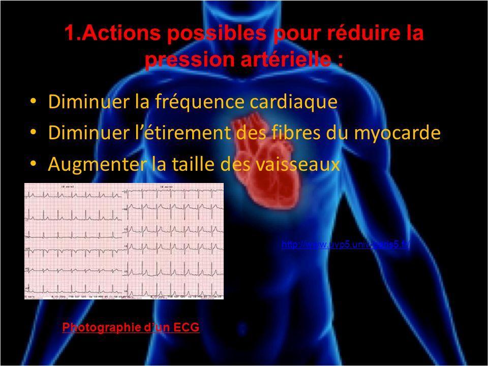 1.Actions possibles pour réduire la pression artérielle : Diminuer la fréquence cardiaque Diminuer létirement des fibres du myocarde Augmenter la tail