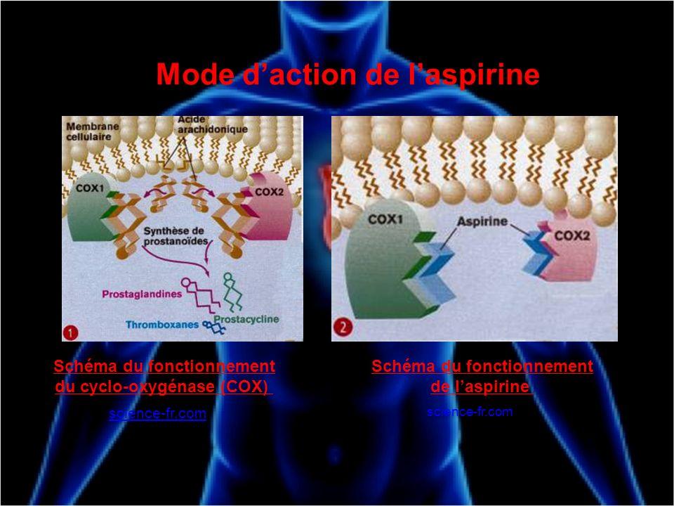 Mode daction de laspirine Schéma du fonctionnement du cyclo-oxygénase (COX) science-fr.com Schéma du fonctionnement de laspirine science-fr.com
