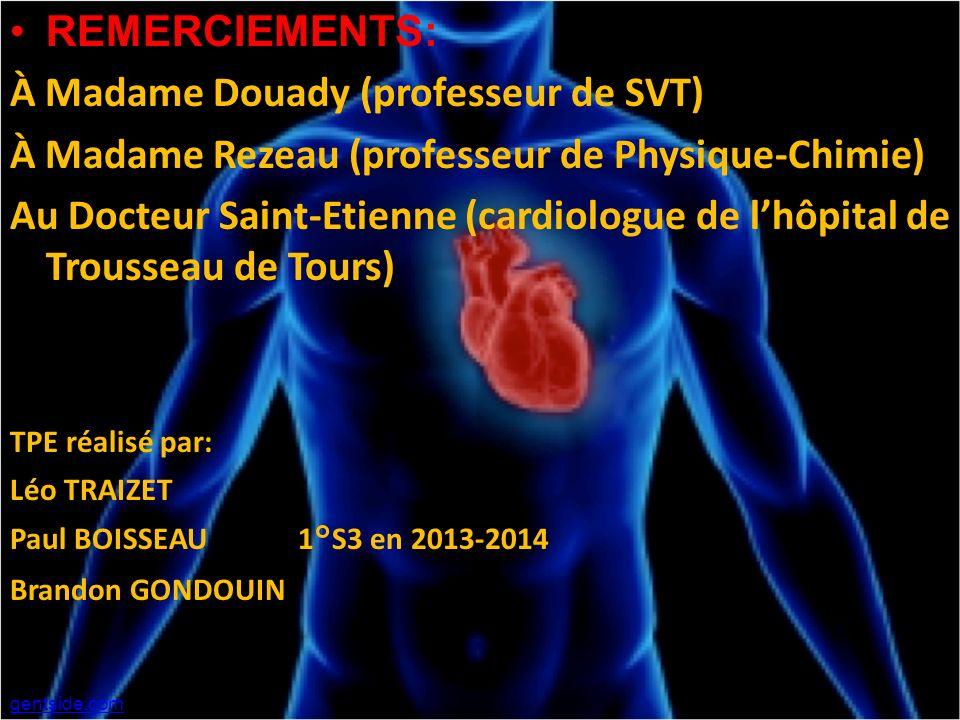 REMERCIEMENTS: À Madame Douady (professeur de SVT) À Madame Rezeau (professeur de Physique-Chimie) Au Docteur Saint-Etienne (cardiologue de lhôpital d