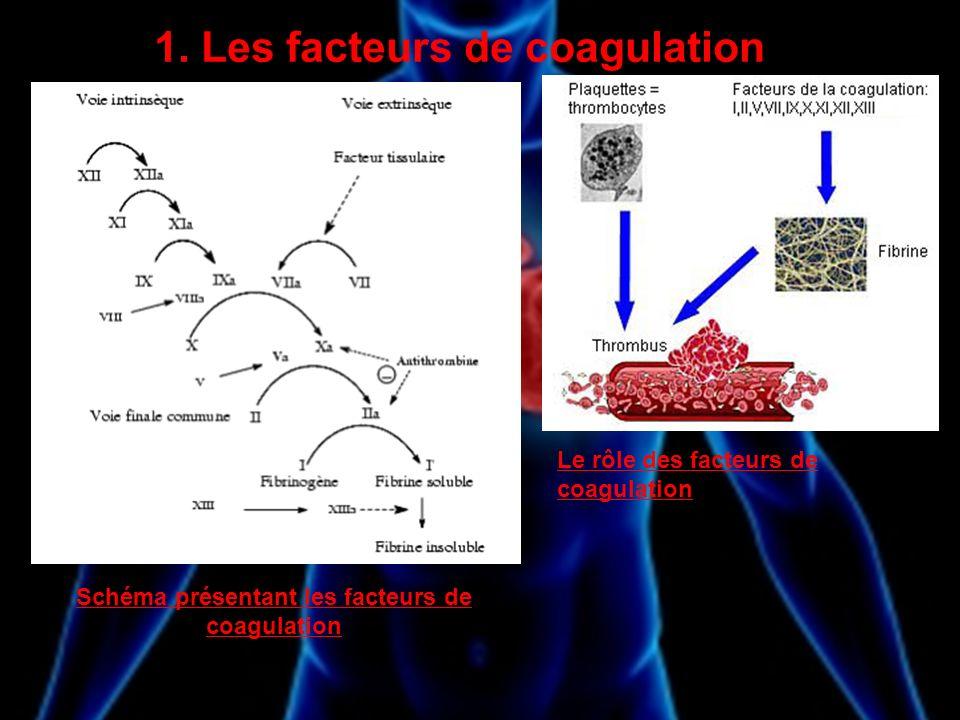 1. Les facteurs de coagulation Schéma présentant les facteurs de coagulation Le rôle des facteurs de coagulation