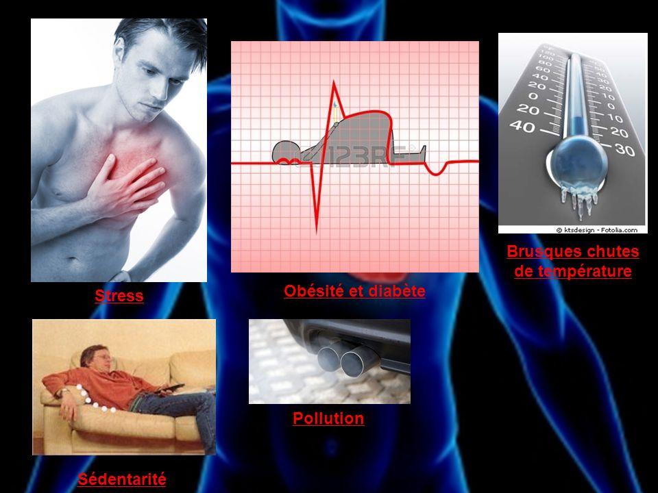 Sédentarité Stress Obésité et diabète Brusques chutes de température Pollution