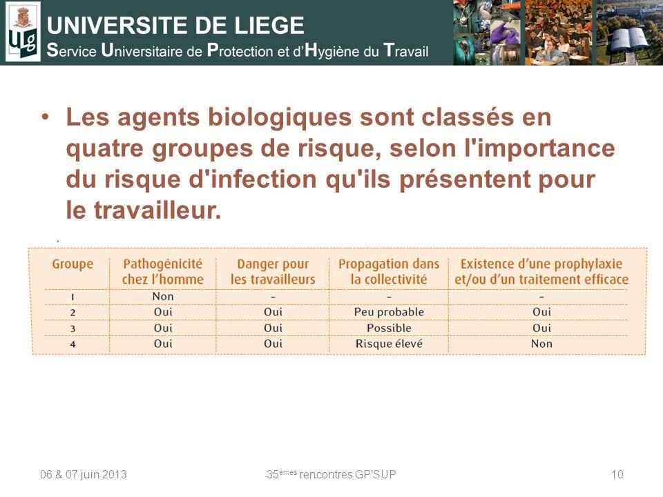 Les agents biologiques sont classés en quatre groupes de risque, selon l importance du risque d infection qu ils présentent pour le travailleur.