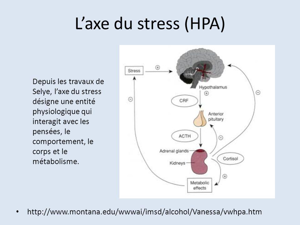 Laxe du stress (HPA) http://www.montana.edu/wwwai/imsd/alcohol/Vanessa/vwhpa.htm Depuis les travaux de Selye, laxe du stress désigne une entité physio