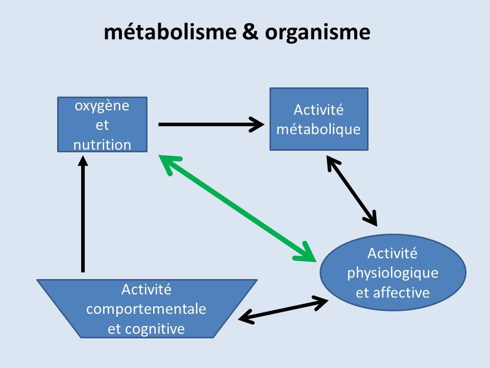 métabolisme & organisme oxygène et nutrition Activité métabolique Activité physiologique et affective Activité comportementale et cognitive