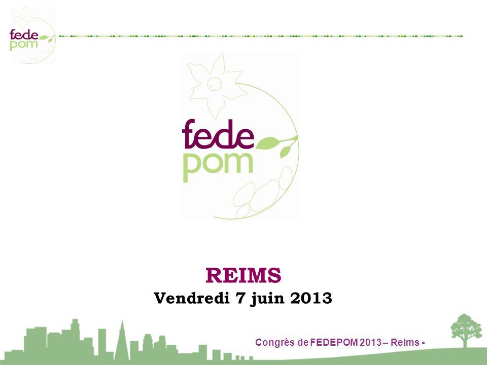 Congrès de FEDEPOM 2013 – Reims - REIMS Vendredi 7 juin 2013
