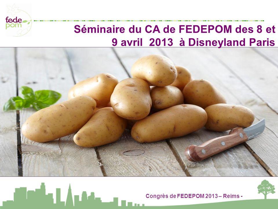 Congrès de FEDEPOM 2013 – Reims - Séminaire du CA de FEDEPOM des 8 et 9 avril 2013 à Disneyland Paris
