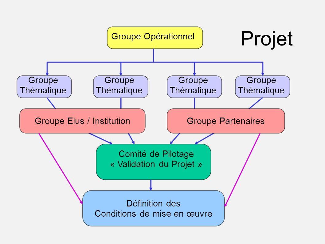 Groupe Thématique Comité de Pilotage « Validation du Projet » Groupe Thématique Groupe Opérationnel Groupe PartenairesGroupe Elus / Institution Défini